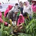 KEM Pertamina Dukung Kemandirian Ekonomi Masyarakat Pekanbaru