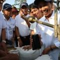 Menteri  BUMN Selesaikan Panen Raya 4000 Ton Gabah di Tempuran, Karawang