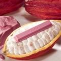 Nestlé meluncurkan KITKAT Chocolatory Sublime Ruby, pertama di dunia