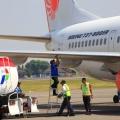 Pemerintah Sebut Tahun 2021 Pesawat Terbang Bisa Gunakan Minyak Sawit