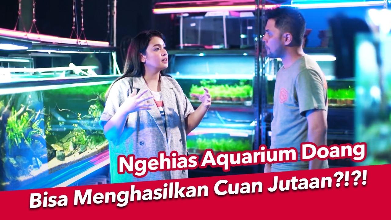 Aquascape, Dari Hobi Masa Pandemi Jadi Peluang Bisnis
