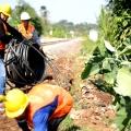 Surge Bangun 2.800 Km Jaringan Fiber Optik di Sepanjang Jalur Rel Kereta