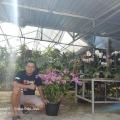 Kisah Rumah Anggrek Vita Orchids, Sukses Manfaatkan YouTube untuk Dekat dengan Pelanggan