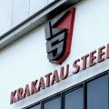 Menteri BUMN Soroti Kondisi Krakatau Steel, Punya 60 Anak Usaha?