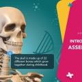 Assemblr Luncurkan Aplikasi Khusus Pendidikan dengan Teknologi 3D