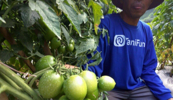 1 Juta Petani untuk Masa Depan Pertanian Indonesia yang Lebih Baik