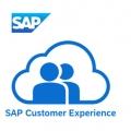 Sinar Mas Land Perusahaan Properti Pertama di Indonesia Gunakan SAP Customer Experience