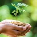 3 Gaya Hidup Perkotaan yang Sustainable untuk Mendukung Lingkungan Hidup