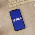 CEO BCA Digital: Ke Depan Bank Digital Bakal Jadi Tren