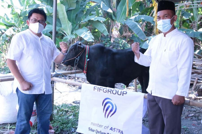 FIFGroup Sumbangkan 374 Hewan Kurban Setara Rp1,2 Miliar