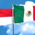 Indonesia dan Meksiko Teken MoU Senilai USD 98 Ribu